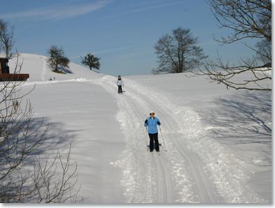 Cross-country skiing in Alberschwende